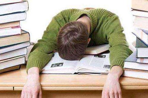留学生作业辅导